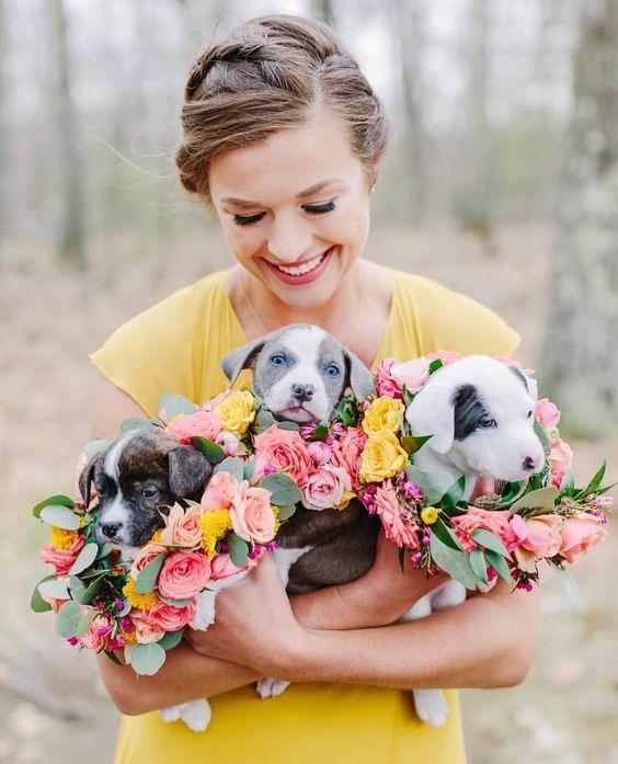Puppy wedding bouquet to encourage adoption